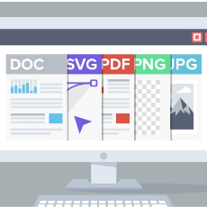Document Viewer SDK Technology