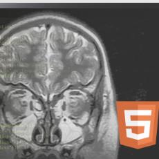 HTML5 Zero-footprint DICOM Viewer SDK Technology Reviews