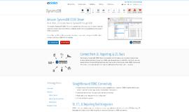 Amazon DynamoDB ODBC Driver Database Libraries App