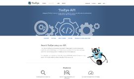 TinEye API Image Recognition App