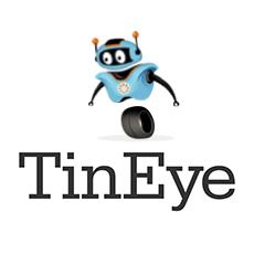 TinEye API