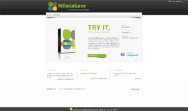 NDatabase NoSQL DB App
