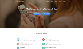 MetricsCat API Business Intelligence App